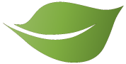 image of Leaf Icon